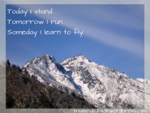 Someday I learn to fly