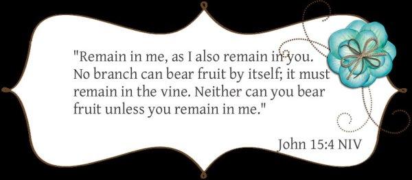 John 15 4